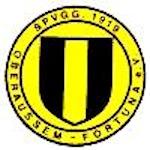 SpVgg. Oberaußem-Fortuna 1919 e.V.