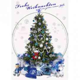 Der Schalker Weihnachtsstern