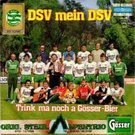 DSV mein DSV